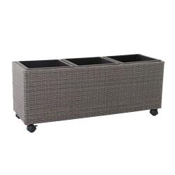 Trampa Ratones Adhesiva 19x14 cm. 2 unidades